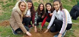 Fidanlar, daha yeşil bir okul için dikildi