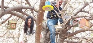 Anasınıfı öğrencilerinden 'Kuş Kafesi' projesi