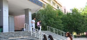 DÜ'de Veteriner Histoloji ve Embriyoloji Tezli Yüksek Lisans programı açıldı