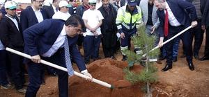 """Şehitkamil ilçesinde """"Bi Dünya Yeşil Orman"""" projesiyle yeni ormanlar kuruluyor"""