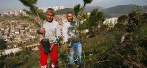 Bayraklı'da ağaçlandırma çalışması
