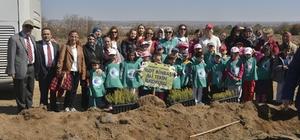 Eko Okullar 2 bin 500 fidanı toprakla buluşturdu