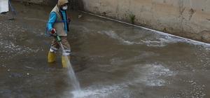 Haliliye'de haşere ve sinekle mücadele