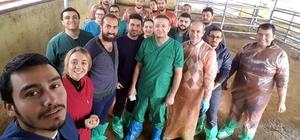 Aydın suni tohumlamada Türkiye'nin eğitim merkezi oldu