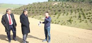 Başkan Karabacak, mesire alanı inşaatını ziyaret etti