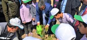 """Başkan Özgüven: """"Orman varlığı milli servetimizdir"""""""
