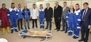 Hakkari'de 'Sokak Hayvanları Rehabilitasyon Merkezi' açıldı