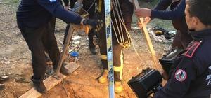 İtfaiyeden kuzu kurtarma operasyonu