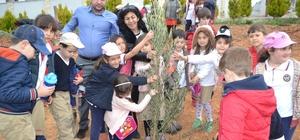 Öğrenciler zeytin fidelerini toprakla buluşturdu