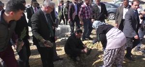 Beyşehir'de 500 fidan toprakla buluşturuldu