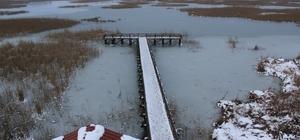 Efteni Gölü Abant'a rakip olacak