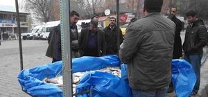 Varto'da vatandaşlar balığa yöneldi