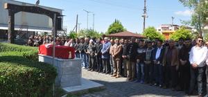 Mardin'deki trafik kazası
