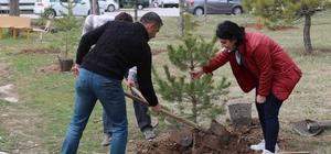 Sivas'ta 'Epilepsi Farkındalığı Hatıra Ormanı' oluşturuldu