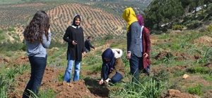 Öğrenciler, 400 fidanı toprakla buluşturdu