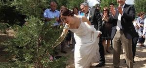 Karşıyaka'da 3 yılda 50 bin fidan toprakla buluştu