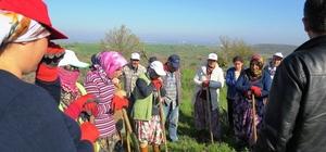 Biga'da İŞKUR  işçileri işe başladı
