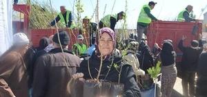 Beylikova'da 10 bin ücretsiz fidan dağıtıldı