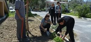 Lise öğrencileri organik gübre üretti