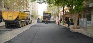 Lise Caddesinin sokakları asfaltlanıyor