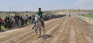 Rahvan At Yarışları ilk kez Nizip'te düzenlendi