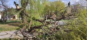 Erzincan'da şiddetli rüzgar vatandaşları evlerine kapattı
