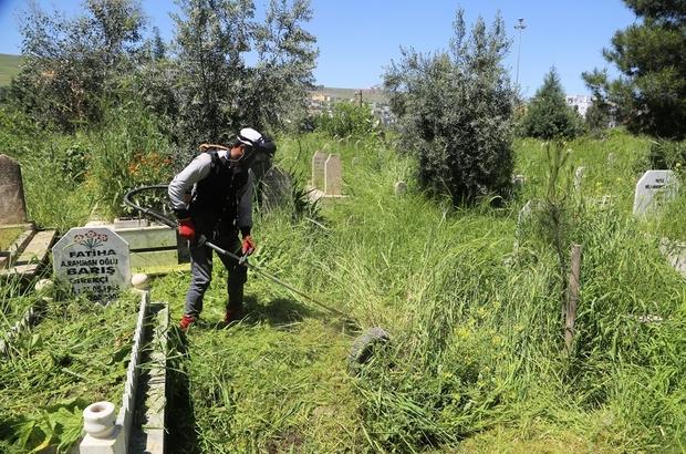 Cizre Belediyesi Asri Mezarlığında temizleme ve bakım çalışmasını başlattı