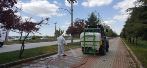 Edirne Belediyesinden bahar hazırlığı
