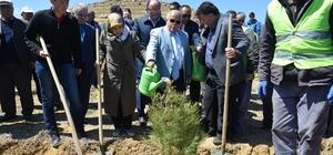 Şehit Polis Gökhan Ünaldı için hatıra ormanı oluşturuldu