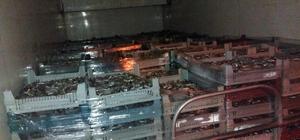 Kaçak avlandıkları 5 ton balıkla yakalandılar