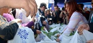 Aydın Büyükşehir Belediyesi Söke'de yerli fide dağıttı