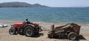 Çalış Plajı kumsalı traktörle temizleniyor