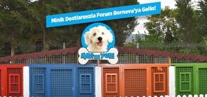 Forum Bornova ICSC ödüllerinde finalde