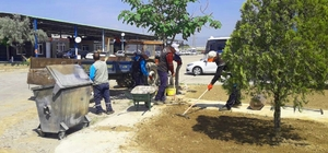 Daha yeşil bir Alaşehir için çalışıyorlar