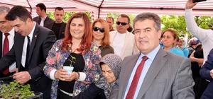 Başkan Çerçioğlu Buharkent'te yerli fide dağıttı