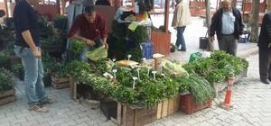Organik sebze fideleri, Emet köylü pazarında