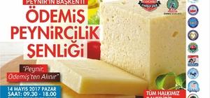 Günde bin tonu aşan süt üretimi bulunan Ödemiş'te peynircilik şenliği