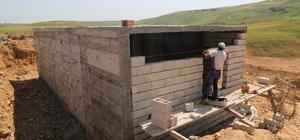 Cizre Belediyesi 60 dönümlük yeşil alan için 100 tonluk su deposu yapıyor