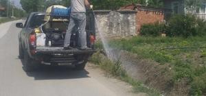 Serdivan Belediyesi ekipleri sineksiz bir yaz için görev başında