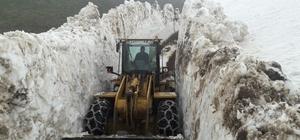 Ordu'da mayıs ayında kar temizleme çalışması