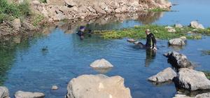 Kaymakam, fotoğraf sanatçısıyla göle dalış yaptı