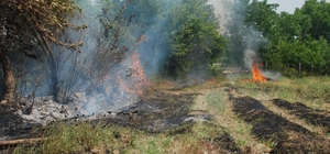 Bahçeler arasında orman yangını