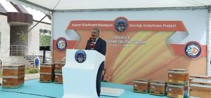 Başkan Çelik, Sarız'da bin 500 kovan arıyı üreticilere teslim etti