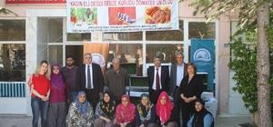 Elazığ'da kadınlara 10 bin domates fidesi dağıtıldı