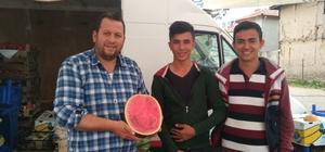 Hisarcık pazarında 'dilim karpuz' satışı
