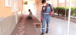 Suriye sınırındaki camilerde ilaçlama çalışması