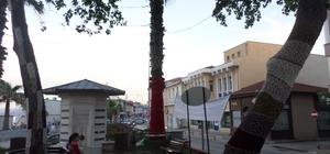 Mudanya'da ağaçlar rengarenk