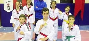 Tavşanlı Taekwondo Dereceleri ile Gururlandırdı