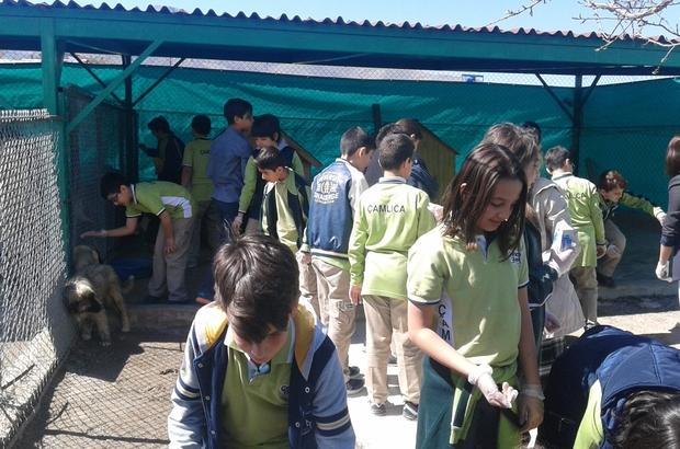 Öğrencilere uygulamalı hayvan bakımı