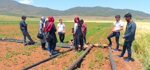 İslahiye MYO organik tarım programı öğrencileri sahada
